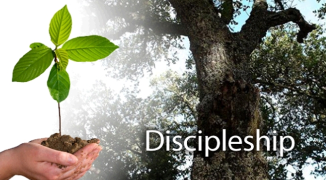Remote Discipleship